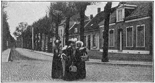 De Heuvel te Oosterhout.